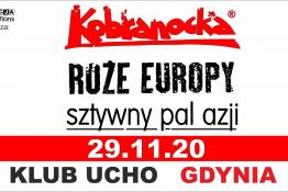 Gdynia Wydarzenie Koncert Kobranocka, Róże Europy, Sztywny Pal Azji